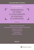 PROBLEMÁTICA EN TORNO A LA DECLARACIÓN EN CONCURSO DE ACREEDORES (2.ª EDICIÓN).