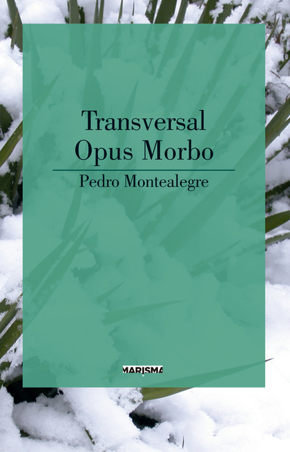 TRANSVERSAL/ OPUS MORBO