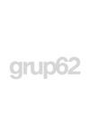 SE LEVANTARON ANTES DEL ALBA-- : MEMORIAS DE UN BRIGADISTA INTERNACIONAL EN LA GUERRA DE ESPAÑA