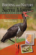 BIRDING AND NATURE TRAILS IN SIERRA MORENA, ANDALUSIA : SIERRA DE ARACENA Y PICOS DE AROCHE