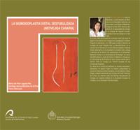 LA SIGNOIDOPLASTIA DISTAL DESTUBULIZADA (NOEVEJIGA CANARIA) : UNA NUEVA SUSTITUCIÓN VESICAL ORT