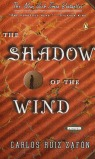 THE SHADOW OF THE WIND.