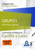 GRUPO I PERSONAL LABORAL DE LA JUNTA DE CASTILLA Y LEÓN. TEMARIO Y TEST MATERIAS.
