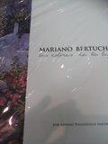 MARIANO BERTUCHI : LOS COLORES DE LA LUZ