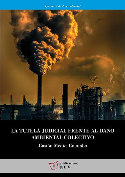 LA TUTELA JUDICIAL FRENTE AL DAÑO AMBIENTAL COLECTIVO                           RADIOGRAFÍA DEL