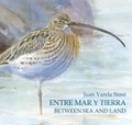 ENTRE MAR Y TIERRA / BETWEEN SEA AND LAND. LAS MARISMAS DEL SUR-THE SOUTHERN MARSHES