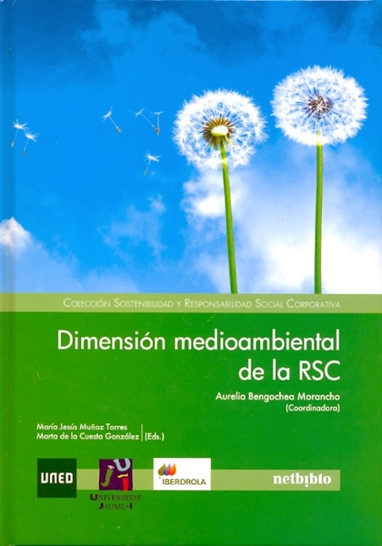 DIMENSION MEDIOAMBIENTAL DE LA RSC